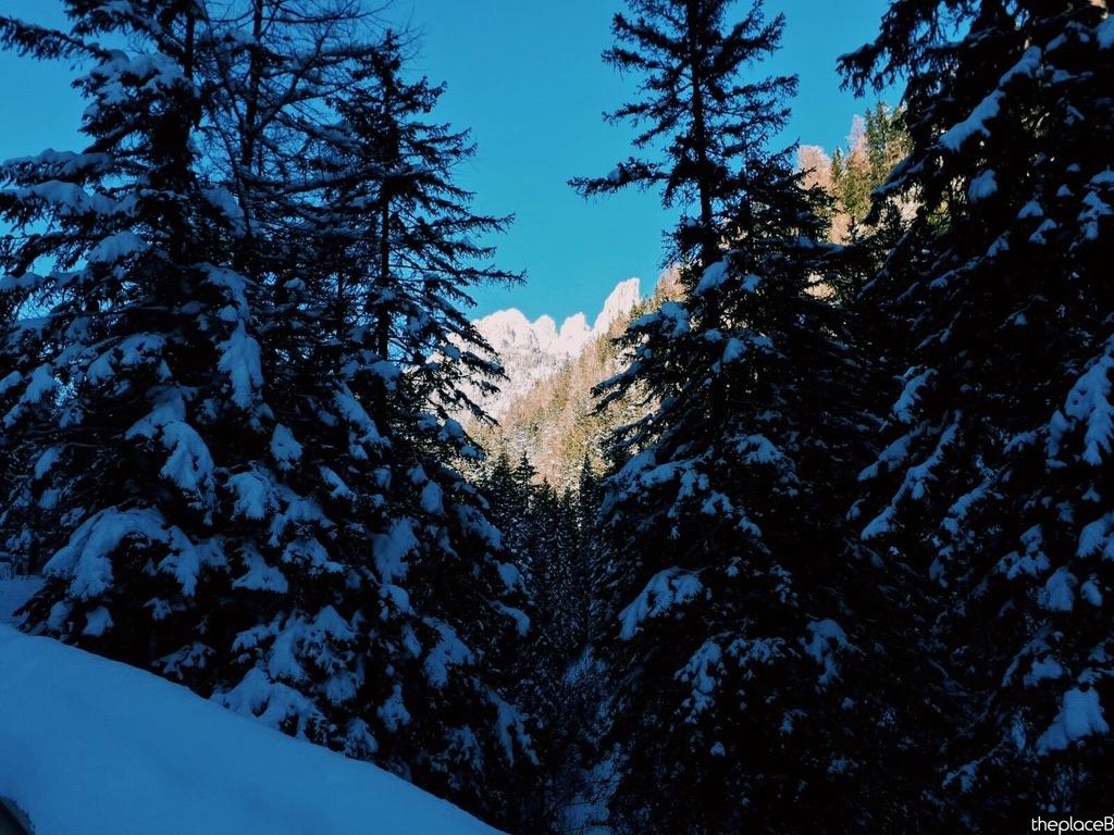 Campitello Val di Fassa Ciaspolata the place B